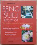 _Feng-šuej